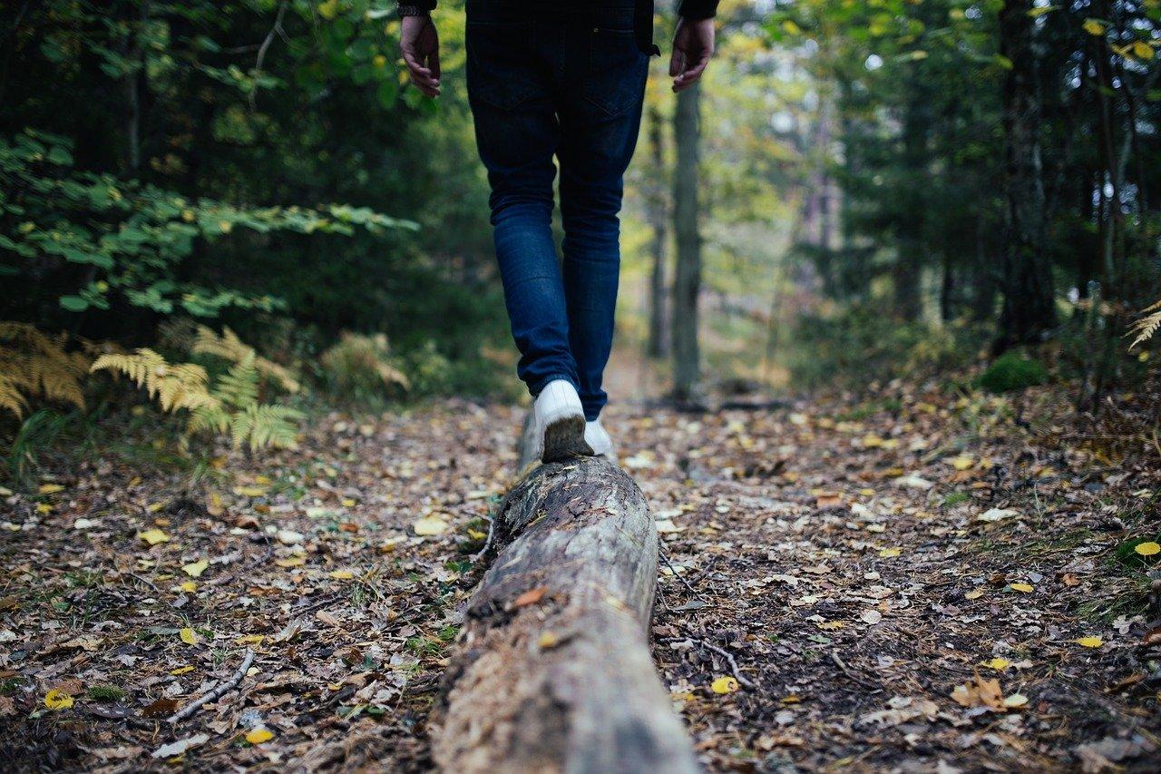 Quelqu'un marche en forêt