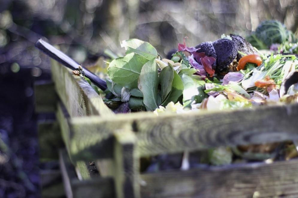 Compoteur en bois avec des épluchures et déchets organiques en décomposition